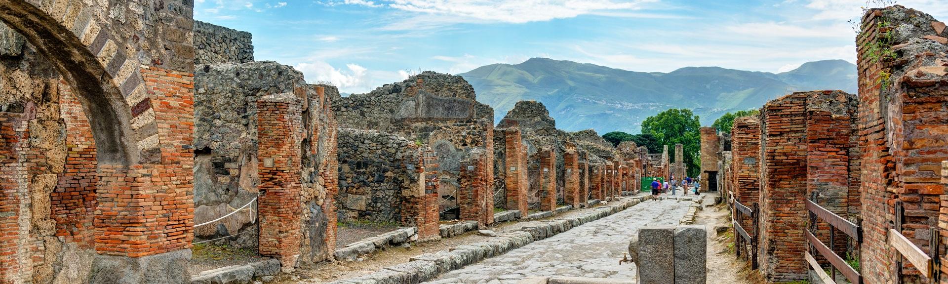 Visite guidée à pied de Pompéi de 2 heures 45€