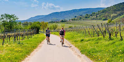 Tour dei vini toscani